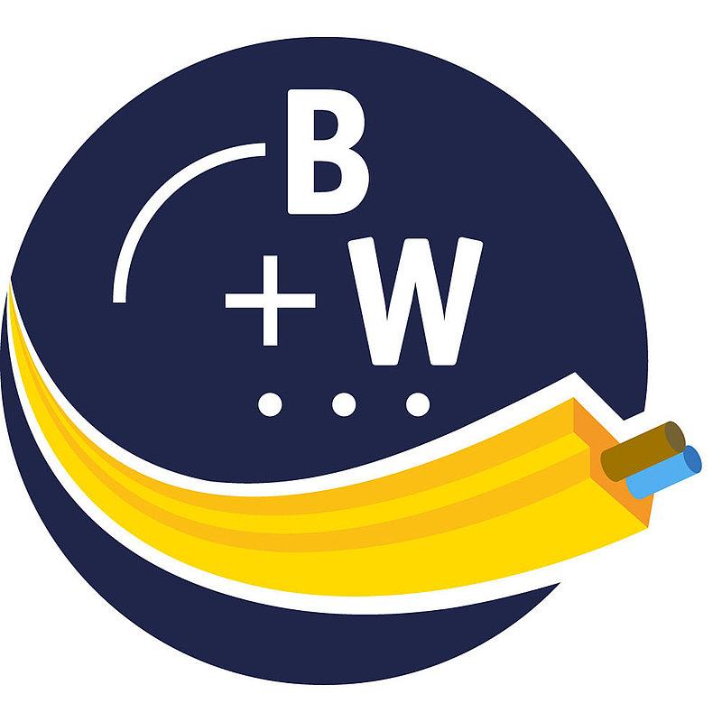 BW2916 | Bihl+Wiedemann Safety Suite - Safety Software